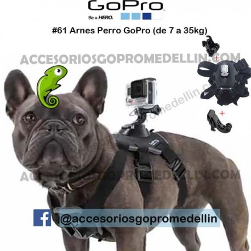 Pechera Arnes GoPro de Perro Cámara Accion